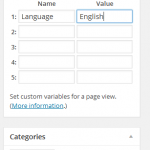 Piwik WordPress plugin for custom variables