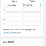 Piwik WordPress plugin for custom variables